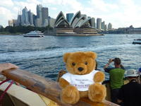 Mr. Blumi in Sydney