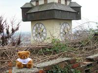 Mr. Blumi beim Grazer Uhrturm
