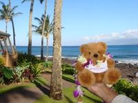 Mr. Blumi in Hawaii
